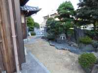 庭(周辺)