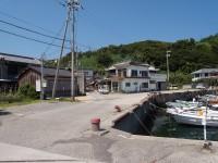 津井港(周辺)