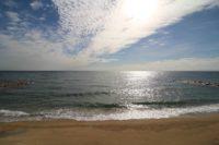 目の前の海(周辺)