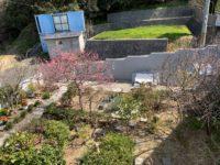2階から見た庭(周辺)